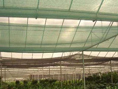 Windbreak Net And Shade Net