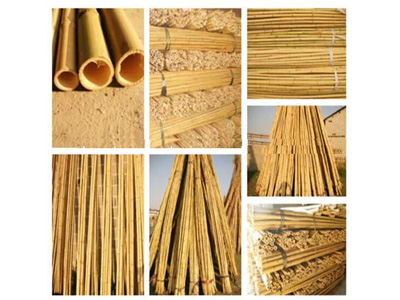 7--plant-trellies---natural-bamboo-1
