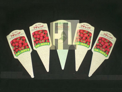 39-plant-labels-with-print-2