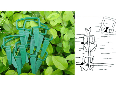 15-plant-clips-2