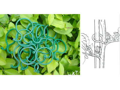 15-plant-clips-3