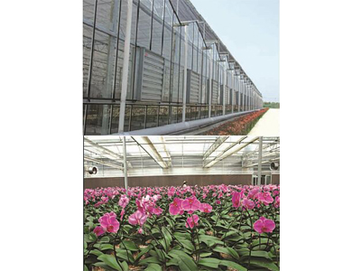 85-greenhouse-fans-exhaust-fans-3