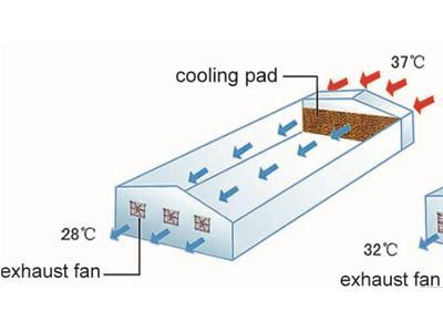 88-greenhouse-cooling-system-1