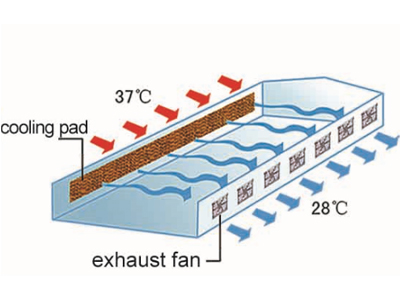 88-greenhouse-cooling-system-2
