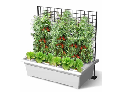 automatic-drip-irrigation-system-2